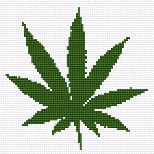 A leaf of hemp