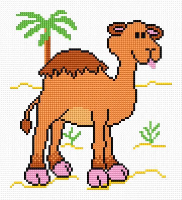 Camel Wiesio