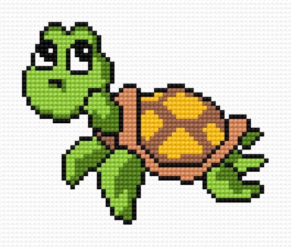 Small tortoise
