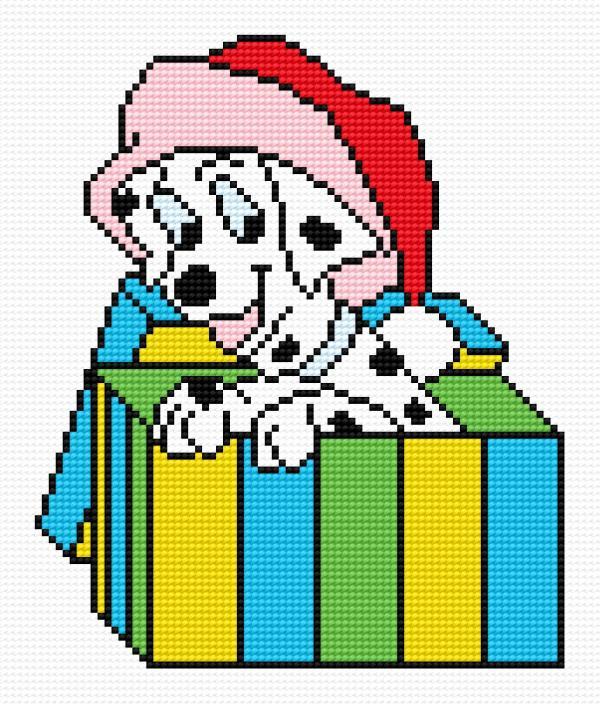 Dalmata dog in box
