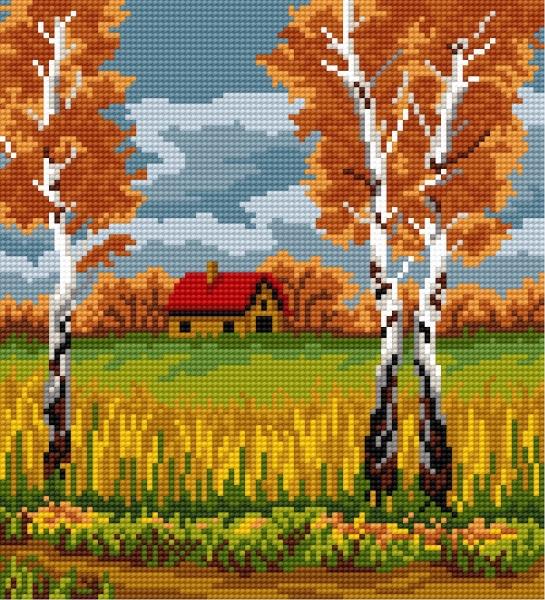 Birch in autumn